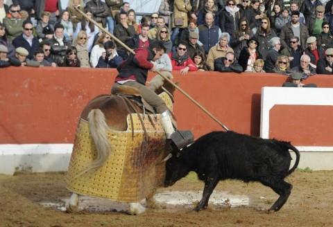 ELENCO DE GANADERIAS PARA LAS TIENTAS DE SELECCION Y NOVILLOS PARA LA FINAL