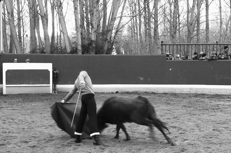 bolsintaurino-cuarta-tienta-2018-9