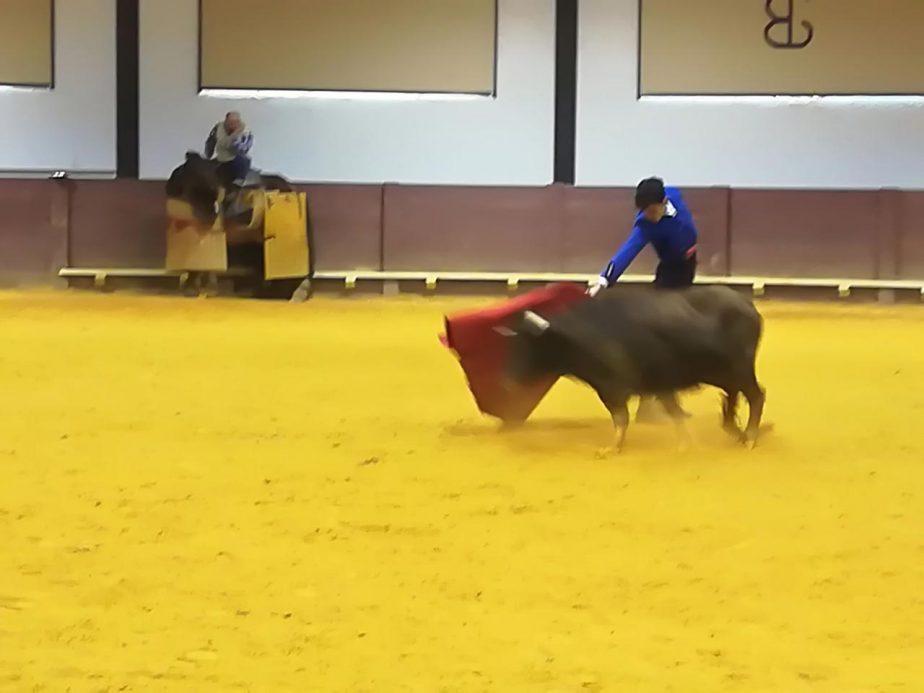 bolsintaurino-segunda-tienta-2018-1