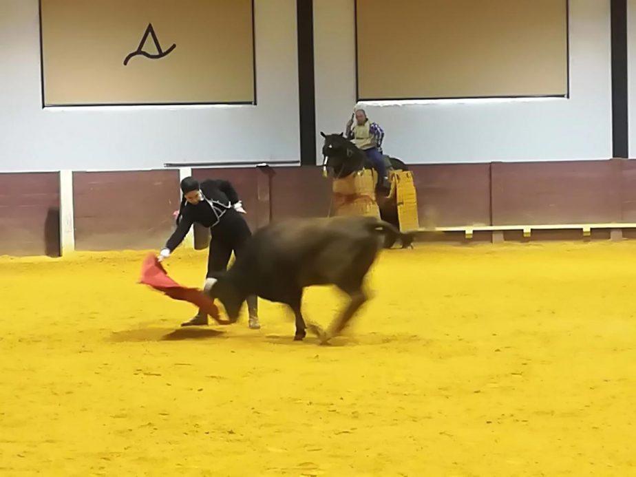 bolsintaurino-segunda-tienta-2018-3