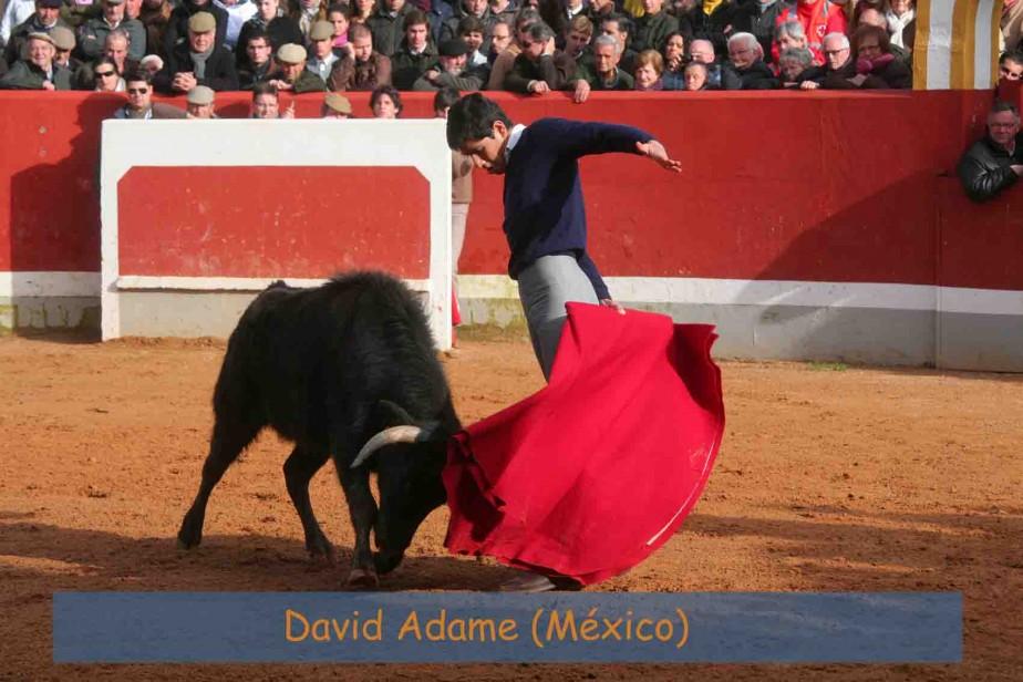 David Adame