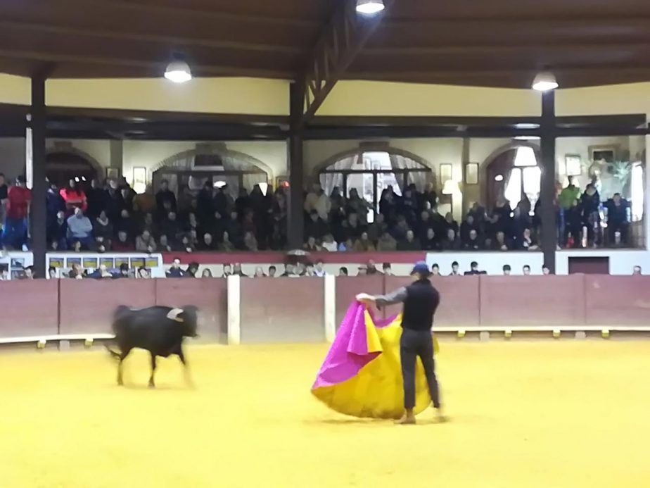 bolsintaurino-segunda-tienta-2018-5